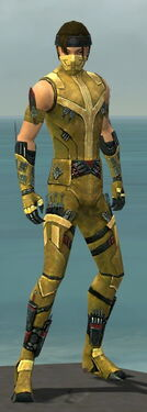 Assassin Canthan Armor M dyed front.jpg