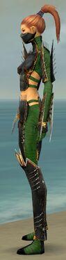Assassin Exotic Armor F dyed side.jpg