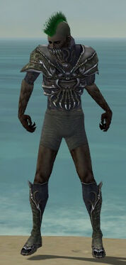 Necromancer Elite Necrotic Armor M gray chest feet front.jpg