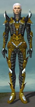 Necromancer Profane Armor M dyed front.jpg