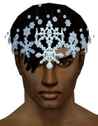 Snow Crystal Crest gray front.jpg