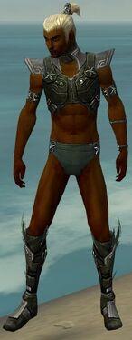 Assassin Luxon Armor M gray chest feet front.jpg