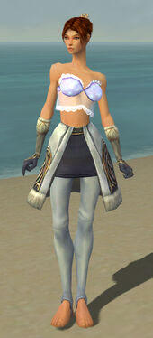 Elementalist Norn Armor F gray arms legs front.jpg