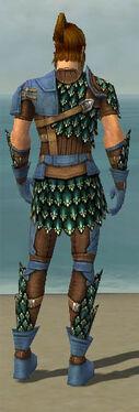 Ranger Drakescale Armor M dyed back.jpg