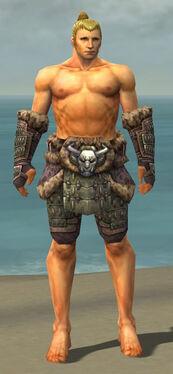 Warrior Charr Hide Armor M gray arms legs front.jpg