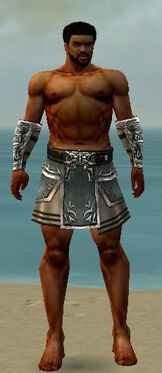 Warrior Istani Armor M gray arms legs front.jpg