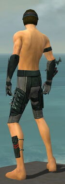 Assassin Seitung Armor M gray arms legs back.jpg