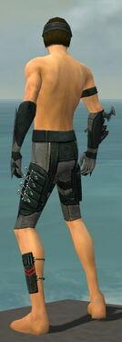 Assassin Seitung Armor M gray arms legs back.jpg