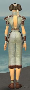 Monk Censor Armor F gray back.jpg