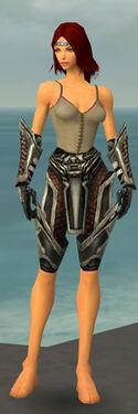 Warrior Elite Kurzick Armor F gray arms legs front.jpg