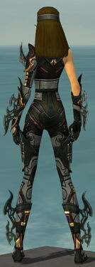 Assassin Elite Kurzick Armor F gray back.jpg
