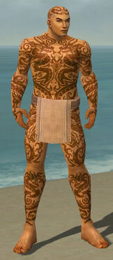 Monk Dragon Armor M dyed front.jpg