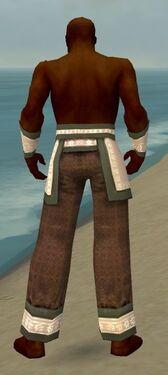 Monk Elite Woven Armor M gray arms legs back.jpg