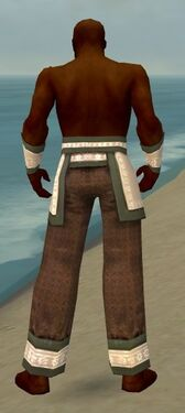 Monk Elite Woven Armor M gray arms legs back.jpg