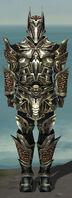 Warrior Elite Kurzick Armor M gray front.jpg