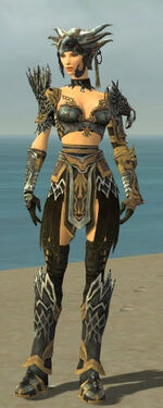 Warrior Silver Eagle Armor F dyed front.jpg