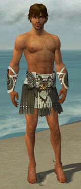 Paragon Elite Sunspear Armor M gray arms legs front.jpg