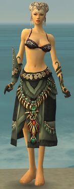 Ritualist Elite Luxon Armor F gray arms legs front.jpg