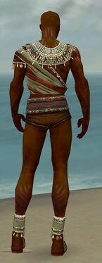 Ritualist Exotic Armor M gray chest feet back.jpg