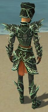 Warrior Elite Luxon Armor F dyed back.jpg