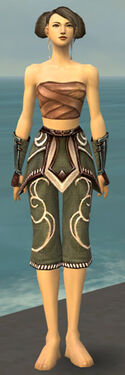 Monk Shing Jea Armor F gray arms legs front.jpg