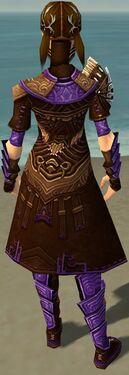 Ranger Monument Armor F dyed back.jpg