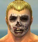 Zombie Face Paint gray front.jpg