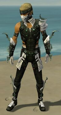 Assassin Elite Luxon Armor M dyed front.jpg