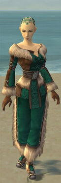 Monk Norn Armor F dyed front.jpg