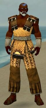 Monk Sunspear Armor M dyed front.jpg