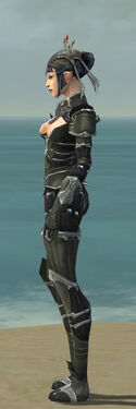 Necromancer Tyrian Armor F gray side.jpg