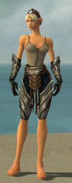 Warrior Elite Sunspear Armor F gray arms legs front.jpg