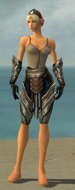 Warrior Elite Sunspear Armor F gray arms legs front.jpg