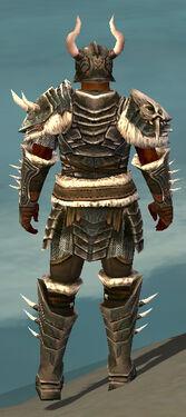Warrior Norn Armor M gray back.jpg