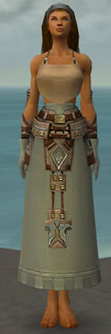 Dervish Istani Armor F gray arms legs front.jpg
