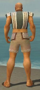 Monk Tyrian Armor M gray chest feet back.jpg