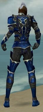 Necromancer Tyrian Armor M dyed back.jpg