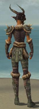 Warrior Charr Hide Armor F gray back.jpg