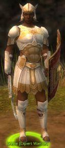 Dume Expert Warrior.jpg
