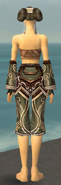 Monk Canthan Armor F gray arms legs back.jpg