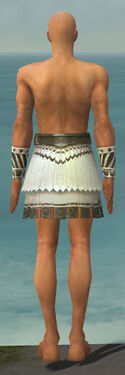 Paragon Istani Armor M gray arms legs back.jpg