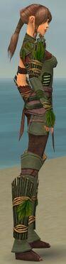 Ranger Druid Armor F gray side alternate.jpg