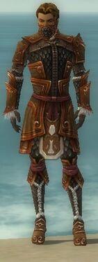 Ranger Elite Canthan Armor M dyed front.jpg