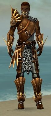 Ranger Elite Sunspear Armor M dyed front.jpg