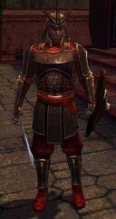 Guardsman Ping.jpg