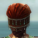 Ritualist Elite Exotic Armor M dyed head front.jpg