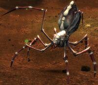 Arachni.jpg
