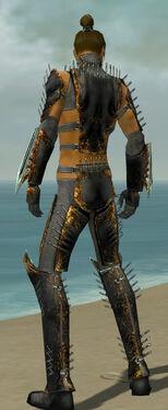 Assassin Exotic Armor M gray back.jpg