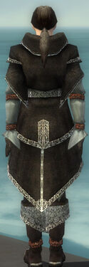 Elementalist Ancient Armor M gray back.jpg