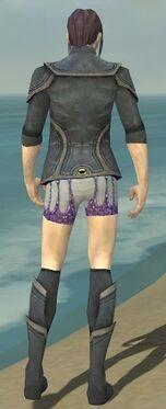 Elementalist Ascalon Armor M gray chest feet back.jpg